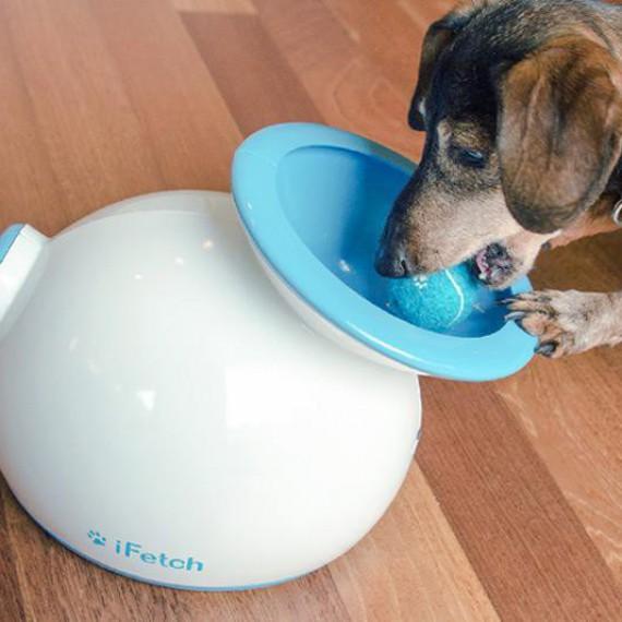 ifetch lanceur de balles automatique pour chien jouets. Black Bedroom Furniture Sets. Home Design Ideas