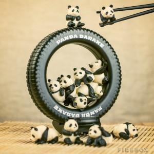 Entraînement à la pratique des baguettes chinoises