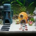 Maison Bob l'éponge pour aquarium
