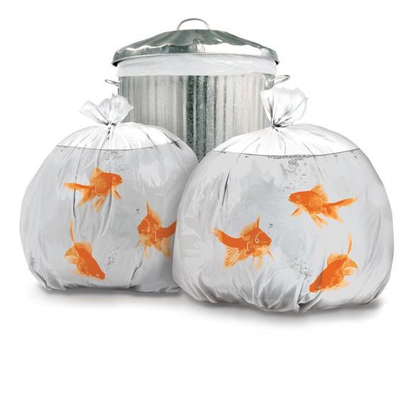 Sacs poubelles poisson