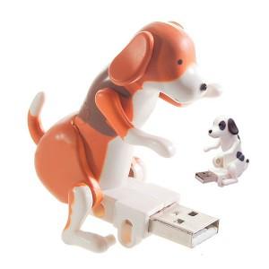Clé USB chien en chaleur