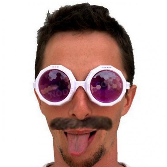 Les lunettes mouches