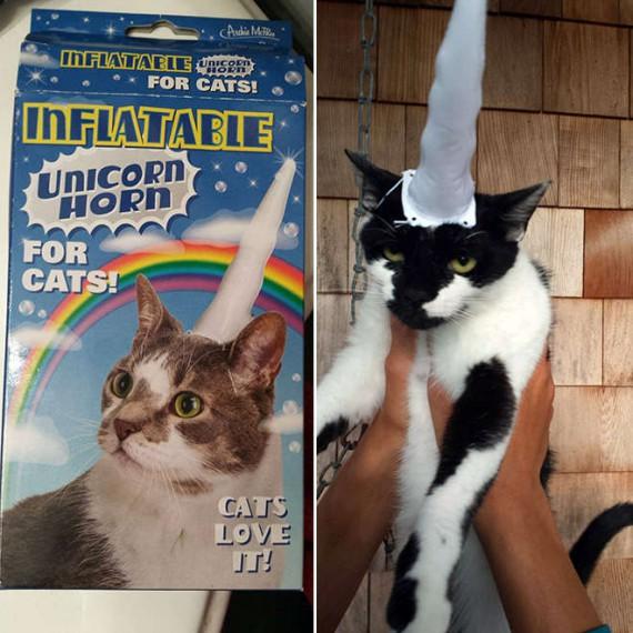 La corne de licorne gonflable pour chat