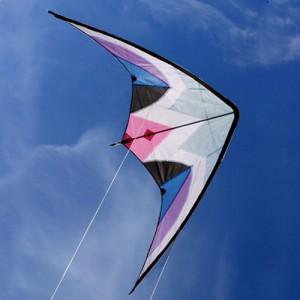 Cerf Volant acrobatique Delta