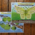 Set de visualisation coaching pour projet d'études