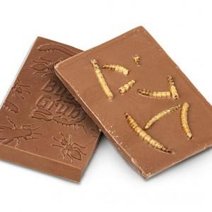 Insectes dans une barre de chocolat