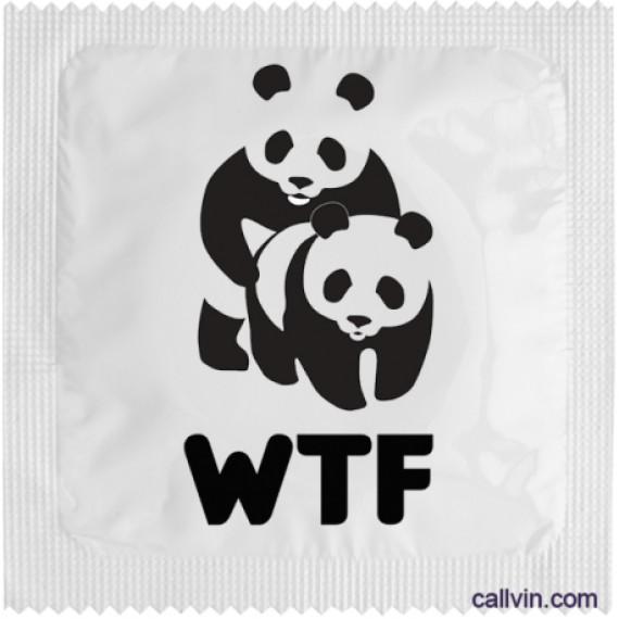Préservatif - WTF Panda
