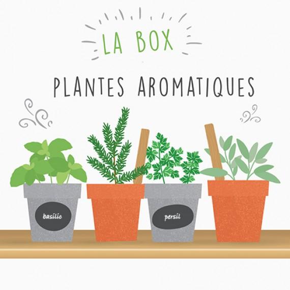 Coffret de jardinage - Box plantes aromatiques