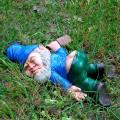 Nain de jardin en état d'ivresse