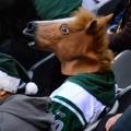 Masque tête de cheval