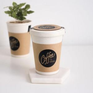 Café à planter