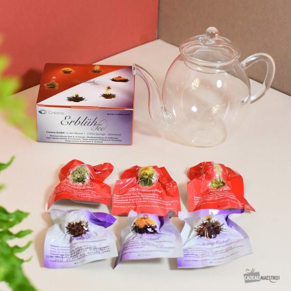 Théière en verre avec fleurs de thé Abloom