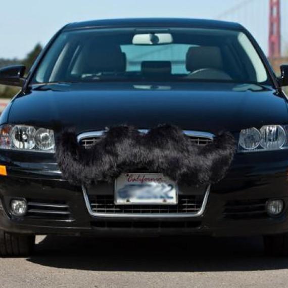 Moustache pour voiture