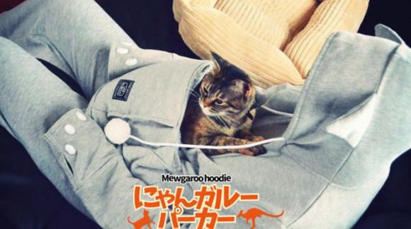 Transportez votre chat partout comme un kangourou grâce à ce sweat