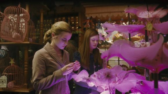 Fan de Harry Potter: Vivez une Saint-Valentin magique