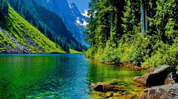 Top idées cadeaux écolos pour la Journée de la Terre