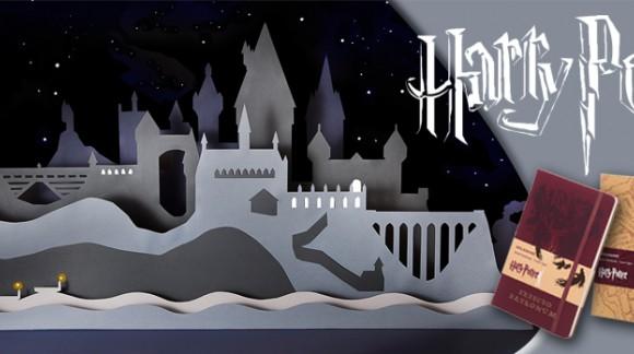 Ecrivez vos secrets dans l'un de ces carnets Harry Potter