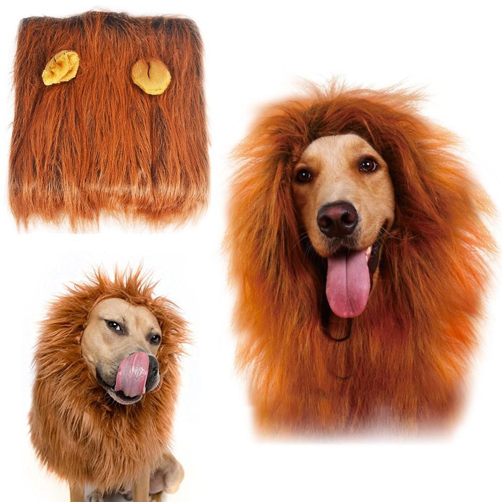 Crinière lion pour chien